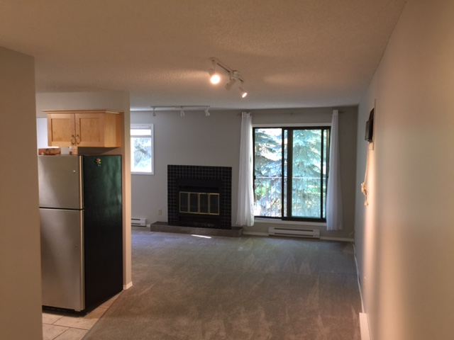 F-169 Horace St.,Winnipeg,Manitoba,2 Bedrooms Bedrooms,1 BathroomBathrooms,Condo,Horace St.,1116
