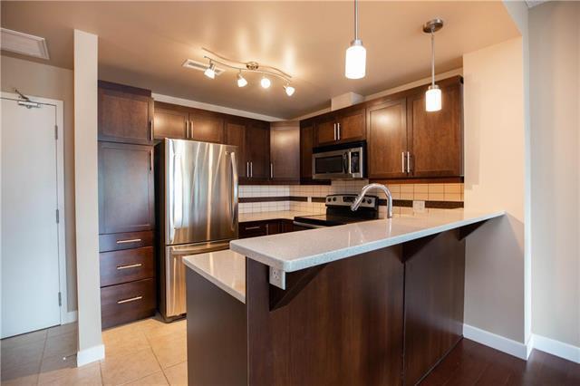 211-340 Waterfront Drive,Winnipeg,Manitoba,2 Bedrooms Bedrooms,1 BathroomBathrooms,Condo,Waterfront Drive,1283